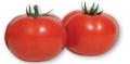 Tomato Kartyer F1