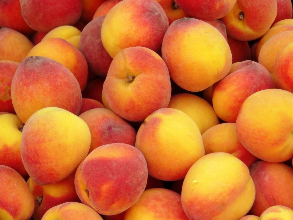Заказать Экспорт персика