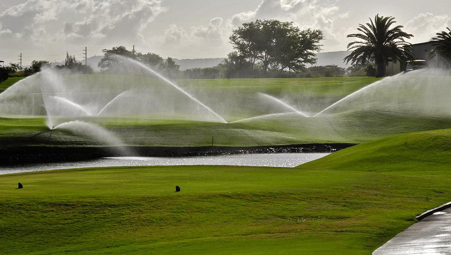 Полив гольф поля