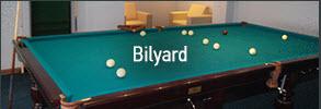 Заказать Бильярд в гостинице