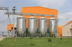 Construction of formula-feed plants