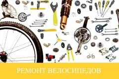 Champion Repair of bicycles