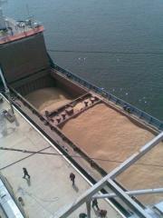 Transportation of wheat in Azerbaijan