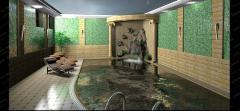 Дизайн саун и бассейнов от UFO Design