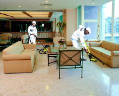 Polishing of firm floors