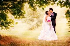 Services of the wedding photographer to order in