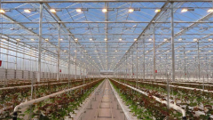 Installation of modern hothouse systems