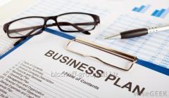 Biznes planın hazırlanması