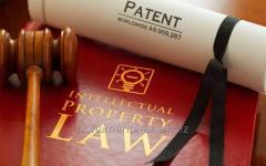 Правовая защита интеллектуальной собственности.