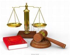 Юридическое сопровождение в уголовных делах.