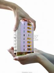 Юридическая консультация в сфере недвижимости.