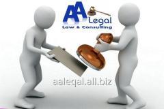 Создание юридических лиц, их филиалы и представительства