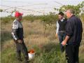 Научные исследования в сельском хозяйстве